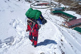 Porters with heavy load,  Nepal  — Stok fotoğraf