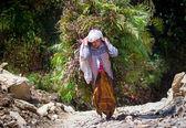 Nepalesische frau trägt schwere last — Stockfoto
