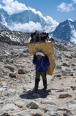 Porters carry heavy load in the Himalaya — Stock Photo