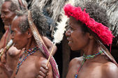 The woman of a Papuan trib — Foto de Stock
