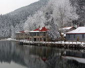 Lushan in winter — Stock fotografie