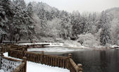 Lushan in winter — Stock Photo