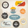 Set of retro badge and labels. Vector — Vecteur #13591484