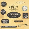 Premium Quality and Guarantee Labels. Vector — Stock Vector #13818261