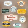 Set of retro badge and labels. Vector — Stock Vector #13818267