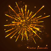 Beautiful Fireworks. Vector — Stock Vector