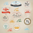 Set of retro stickers and labels. Vector — Stock Vector #22268481