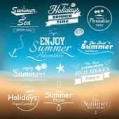Vintage summer typography design with labels. Vectors — Stok Vektör