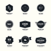 Set of retro minimalistic  badges and labels — Stock Vector