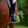 Foot of the athlete in a stirrup — Stock Photo