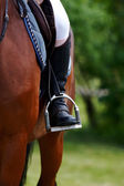 Foot of the athlete in a stirrup — Stockfoto