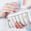 Beautiful female hands with manicure with a handbag — Stock Photo