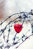 Red heart and barbed wire. — Stock Photo