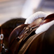 Saddle with stirrups — Stock Photo #21378455