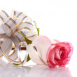 Rose and elegant bow. — Stock Photo #21846703