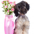 Stock Photo: Decorative doggie and roses in vase.