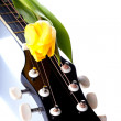 Guitar and yellow tulip. — Stock Photo