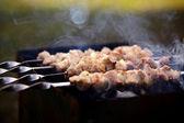 Fried shashlik — Stock Photo