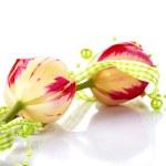 Постер, плакат: Two tulips and green beads