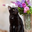 The black cat sits near a vase with the flowers. — Stock Photo