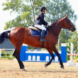 Stockfoto: Sportswomon horse at competitions.