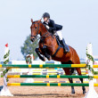 Equestrisport competitions. — Stock Photo #30010343