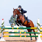 Equestrian sport competitions. — Stock Photo