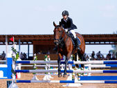 Competitions on a show jumping. — Stock Photo