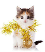 Kitten with a festive garland and a ball — Stock Photo