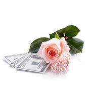 Pink rose, Dollars and pearl beads. — Stock Photo