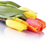Bouquet from yellow and red tulips. — Stock Photo