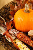 Fall Decorations With Pumpkin And Indian Corn — Stock Photo