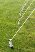 Five Tied Tent Stakes — Stock Photo