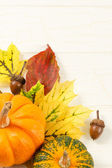 Fall Leaves With Gourds And Accorns — Stock Photo