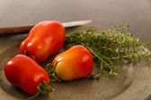 Ripe Red Homegrown Plum Tomatoes — Stock Photo