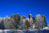 Orthodox Church of snowy trees — Stock Photo