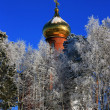 Stock Photo: Orthodox Church of snowy trees