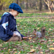 Small boy and little squirrel in autumn park — Stock Photo