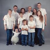 Large family portrait, studio — Stock Photo