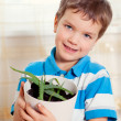Boy puts plant in pot — Stock Photo
