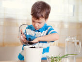 Boy puts plant in pot — Stock Photo