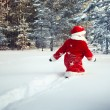Boy dressed as Santa walks in forest — Stock Photo