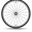 Wheel of bicycle — Stock Vector