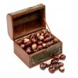 Chest With Chestnut — Stock Photo