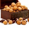 Chest With Walnuts — Stockfoto