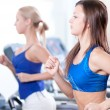 Two young women run on machine in the gym - Foto de Stock