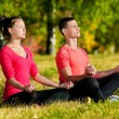 Man and woman woman doing yoga in park — Stock Photo #19961457