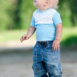 Happy little boy in the green park — Stock Photo #19973477