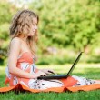 Young woman with laptop at park — Stock Photo #19980187