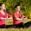 Man and woman woman doing yoga in park — Stock Photo #32888469
